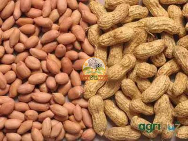 Selling of groundnut - 1/1
