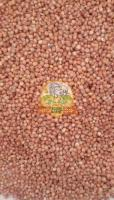 Red sorghum ( cholam, Jowar)