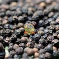 Coorg best quality pepper for sale