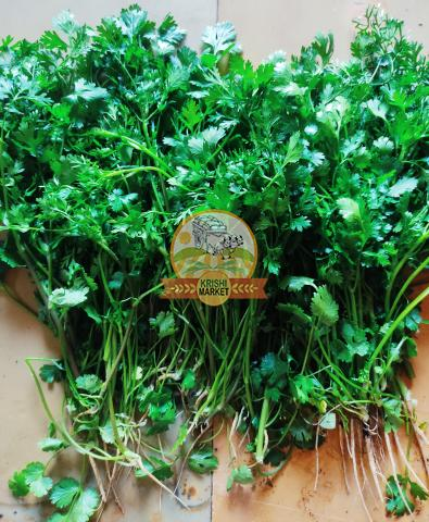 Fresh Coriander Leaves - 1/3