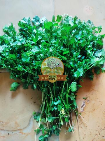 Fresh Coriander Leaves - 3/3